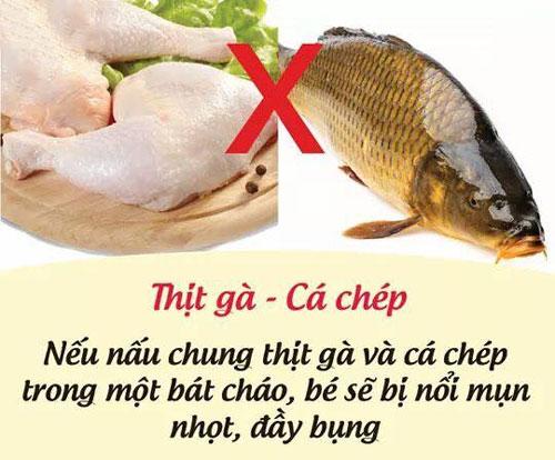Thịt gà và cá chép