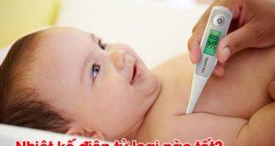 Nhiệt kế điện tử cho bé loại nào tốt?