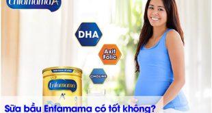 Sữa bầu enfamama có tốt không?