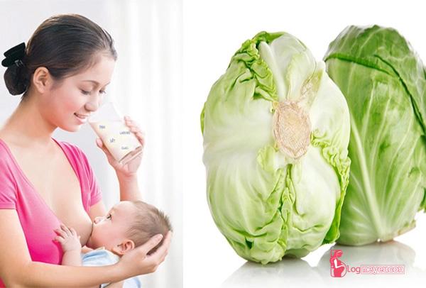 Bà bầu ăn bắp cải có bị mất sữa không?