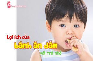 Lợi ích của bánh ăn dặm đối với trẻ nhỏ