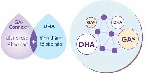 mẹ cần bổ sung DHA ngay từ những ngày đầu thai kỳ để thai nhi phát triển toàn diện