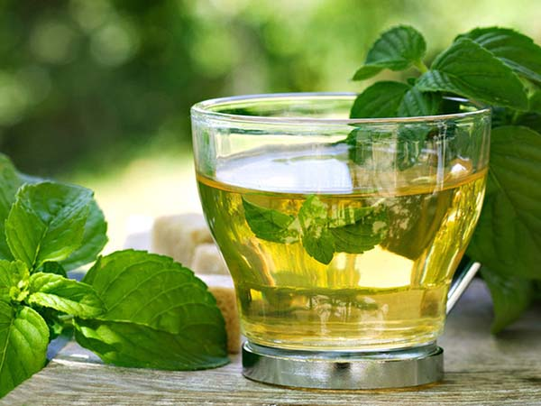 Uống trà bạc hà hoặc ngửi tinh dầu bạc hà