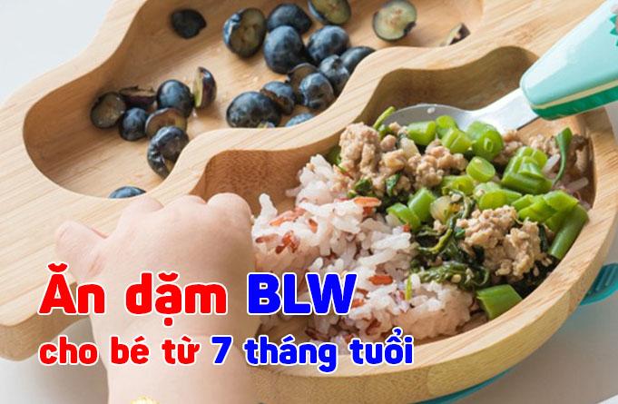 Thực đơn ăn dặm BLW cho bé 7 tháng tuổi