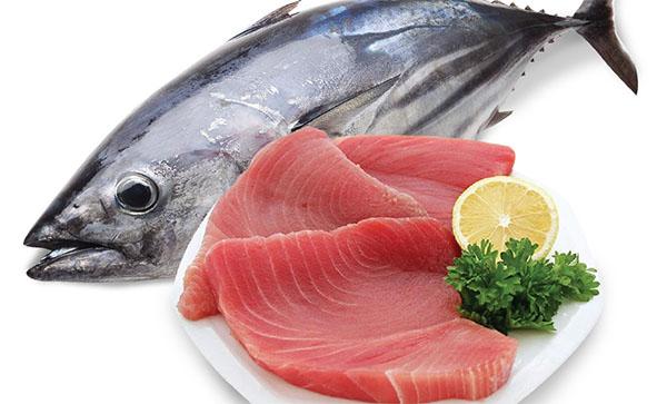 Bà bầu có nên ăn cá ngừ không?