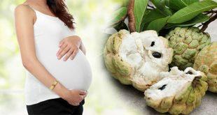 Phụ nữ mang thai ăn na có tốt không?
