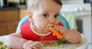 Thực đơn ăn dặm BLW kết hợp kiểu Nhật cho bé 7 tháng tuổi ăn dặm