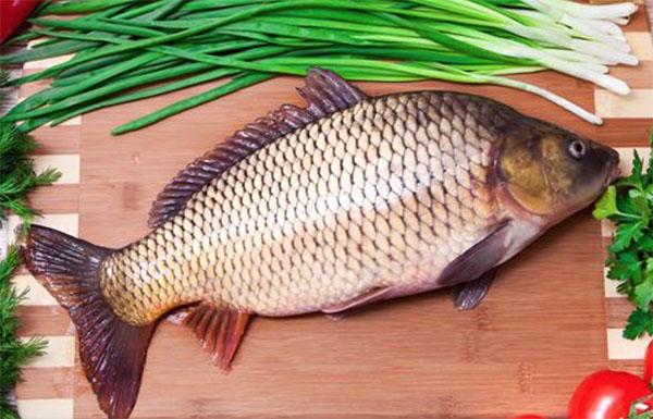 Cá chép rất giàu vitamin và dưỡng chất tốt cho bé ăn dặm từ 7 tháng tuổi
