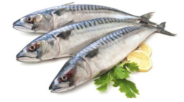 Lợi ích của cá thu khi cho bé ăn dặm