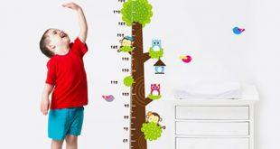 Cách tính chiều cao của con khi trưởng thành