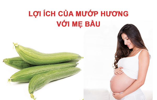 Với giá trị dinh dưỡng dồi dào, mẹ bầu có thể ăn mướp trong suôt thai kì